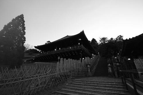 25-02-2019 Nara on morning (23)