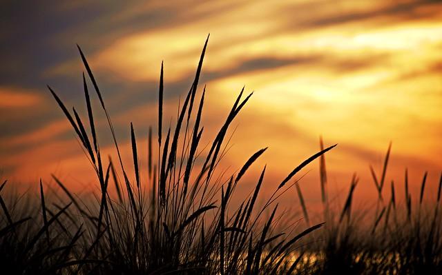 I Spy a Sunset Sky #14