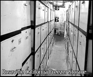 roseville meat storage