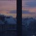 daily 2019 jan 11 fri - morning sunrise by crozefeet