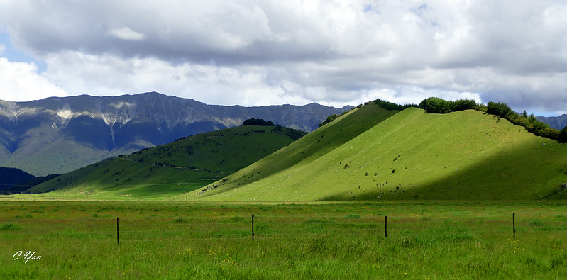New Zealand - Westport