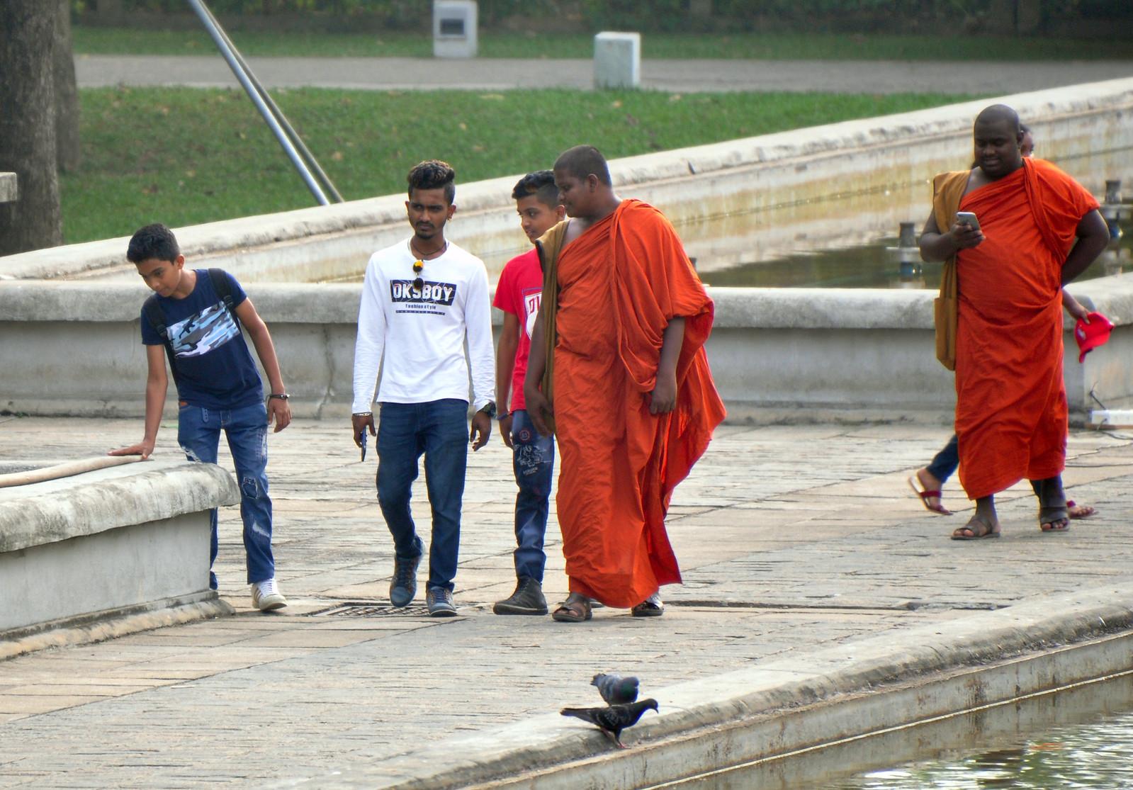 Qué ver en Colombo en un día, Sri Lanka qué ver en colombo en un día - 40076171433 415b788a4f h - Qué ver en Colombo en un día
