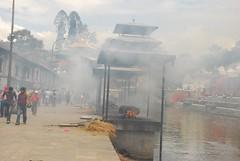 Nepal. Kathmandú. Templo hinduista de Pashupatinath (30)