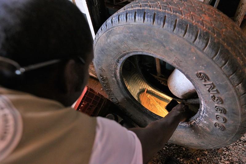 Combate ao Aedes é intensificado no Distrito Federal