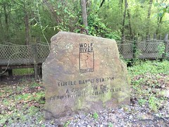 2016-04-30 19.14.35; Wolf River Greenway, Germantown TN