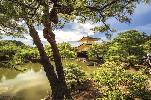 Kinkaku-ji, The Golden Pavilion - Kyoto (Japan)