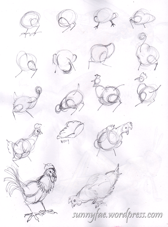 chicken drawing exercises
