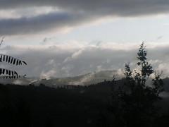 20080912 35548 1013 Jakobus Nebel Hügel Licht Sonne_K
