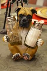Salt & Pepper Dog