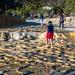 2018 - Mexico - Oaxaca - Hierve el Agua - 5 of 10 por Ted's photos - Returns late Feb