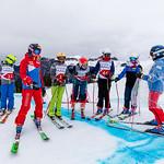 Skicross SM Hoch-Ybrig 2019 Sonntag