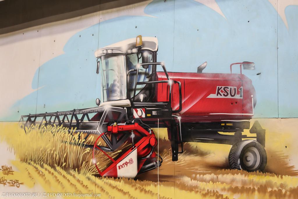 ТОП 10 стран-производителей зерновых