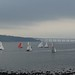 Sailing, Boxing Day, RTYC