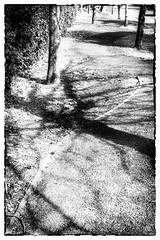 Les Errements de l'âme / The wanderings of the soul #5
