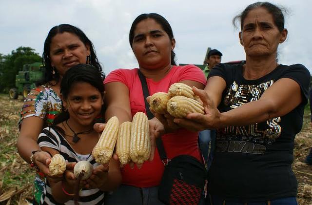Camponeses venezuelanos buscam superar crise com autogestão da produção de alimentos