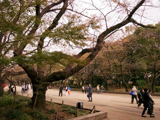 820-Japan-Tokyo