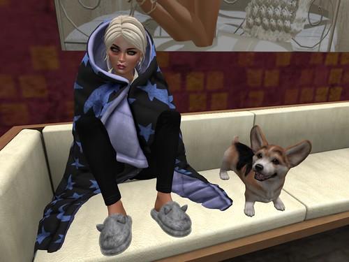 New Puppy! Meet Lexi