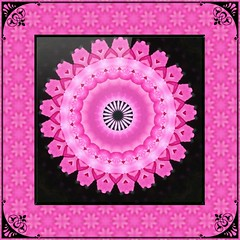 Pink Mandala in Pink Tessellation with Black Accents