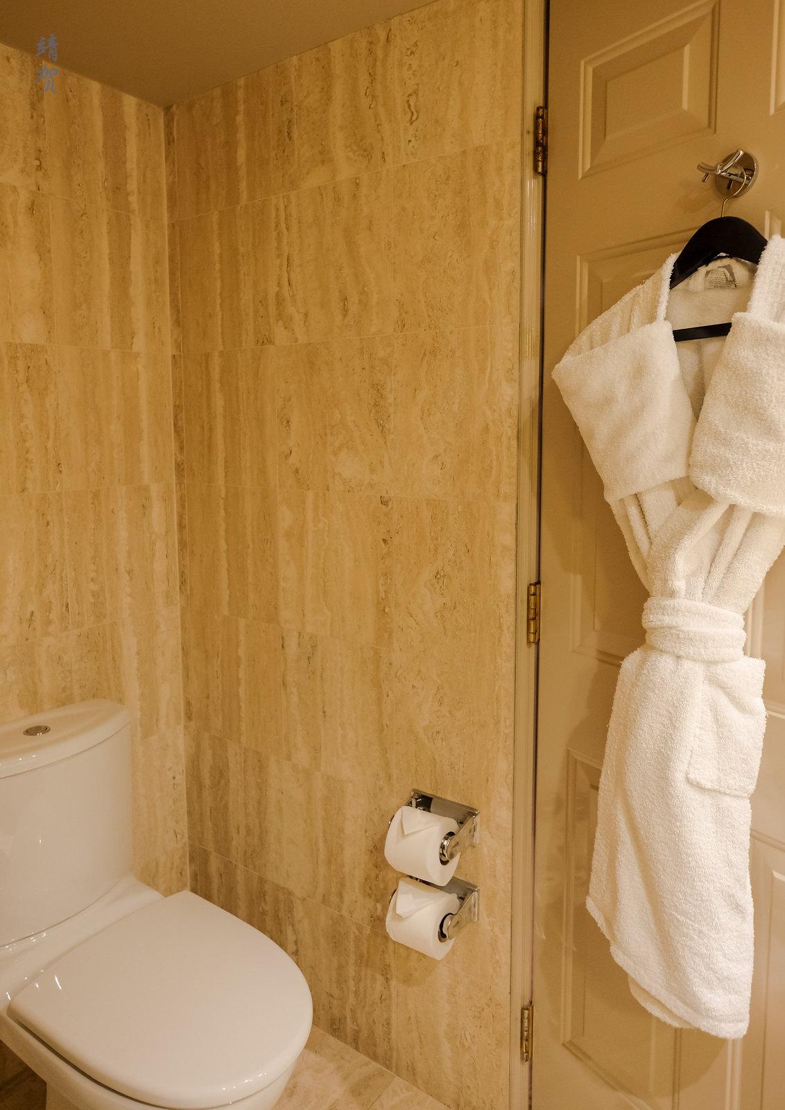 Toilet and bathrobe