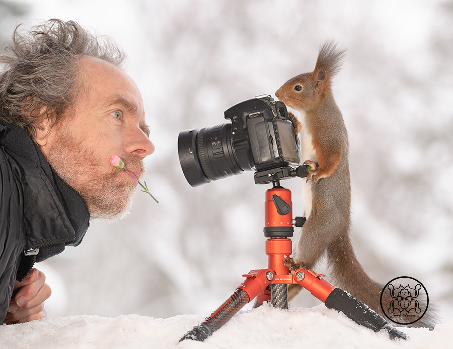 Red squirrel standing behind a camera and a person with a flower