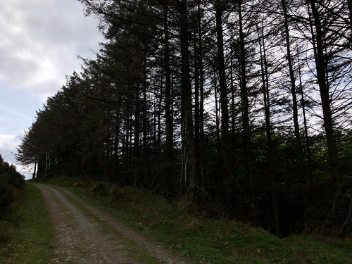 Hellfire Walk 2018-4