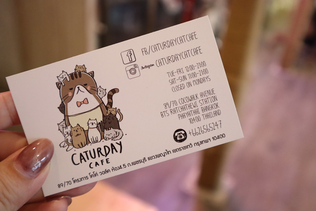 Caturday cat cafe (22)