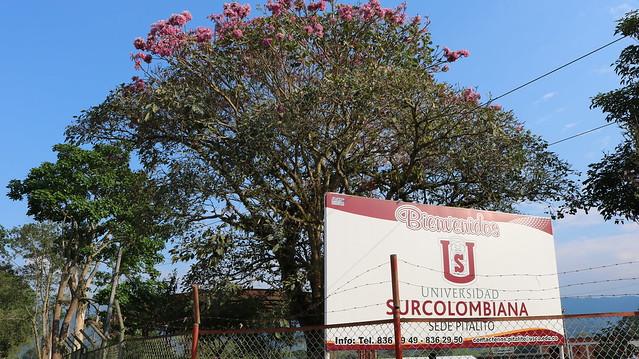 Talleres Institucionales con los nuevos estudiantes de las sedes Pitalito y Garzón