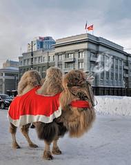 Челябинск - символ города )))