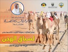 تفاصيل أشواط بطولة الكويت التاسعة عشر للهجن 2019