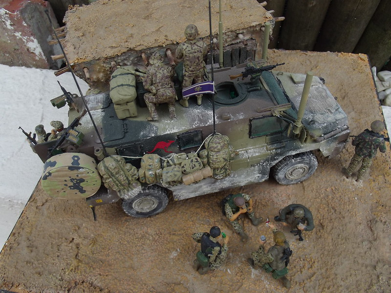 BUSHMASTER - SHOWCASE MODELS - 1/35 33433903158_c89fce7237_c