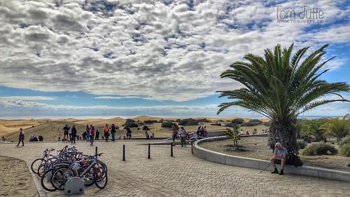 Dunas De Maspalomas, Playa del Inglés, Gran Canaria, Spain - 2244