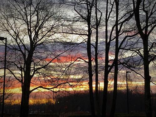 Princeton Winter Wonderland