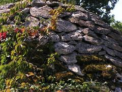 20080916 38027 1017 Jakobus Steinhaus Mauer Wein - Photo of Pern