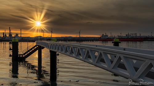 Harbor Sunset HFF