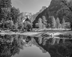 Merced River Reflection in Black and White