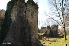 87 Les Salles-Lavauguyon - Lavauguyon - Photo of Maisonnais-sur-Tardoire