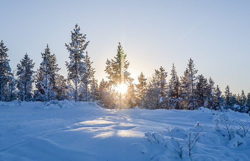 DSC_9603 | by adventurelandlapland