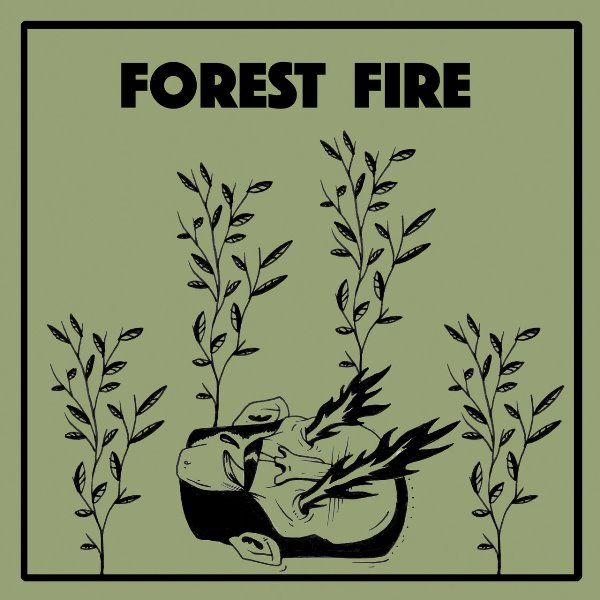 Wintersleep - Forest Fire