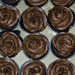 2019-039/365 Cupcakes by Sharky.pics