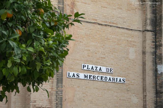 20190224-Unelmatrippi-Sevilla-DSC0711