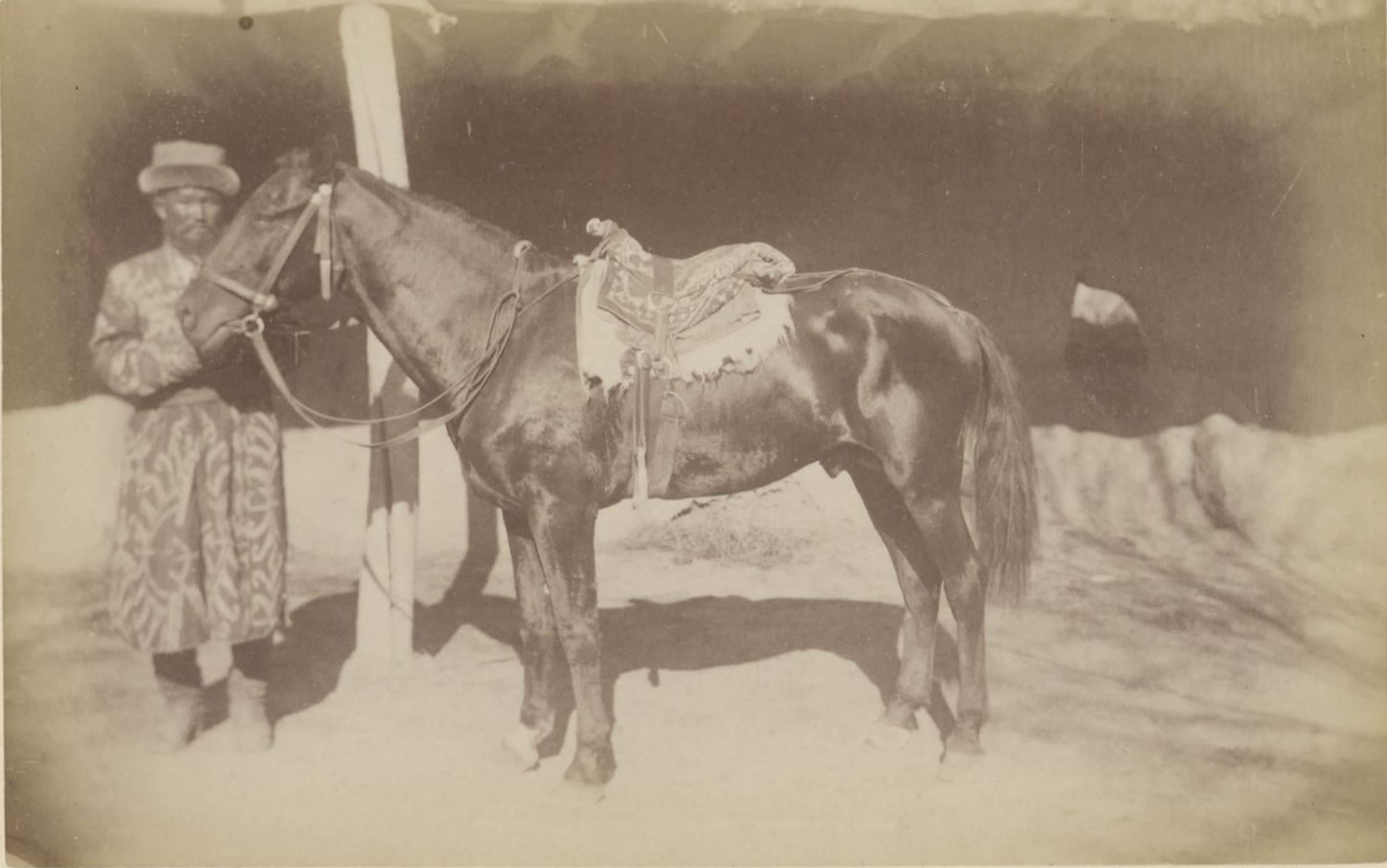 20. Карабайрский конь
