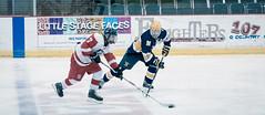 PHHS Hockey v PHN 2.14.19-25