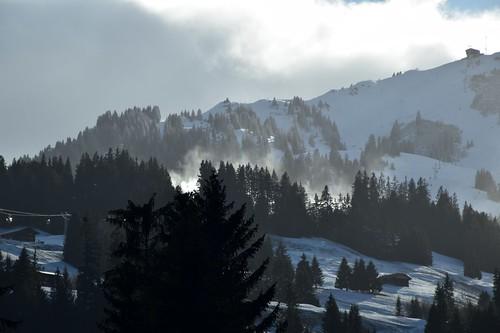 Wolken tussen de bomen.