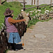 CUZCO_Vallesagrado_Chinchero_escalera