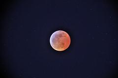 Lunar Eclipse, 20 Jan 2019