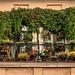 Balcony (St. Petersburg, Russia) #126, 08-2018, (Vlad Meytin, vladsm.com)