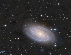 M81 and Integrated Flux Nebula