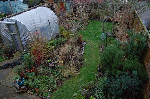 Looking Down on the Back Garden - December 2018
