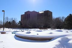 Snow Photos-7