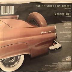 THE SYSTEM:DON'T DISTURB THE GROOVE(JACKET B)